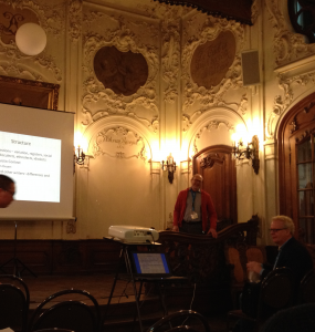 Martti as the plenarist