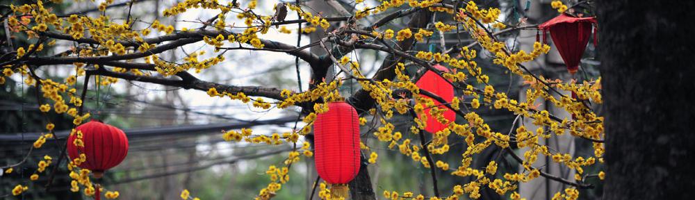 Kirsikkainen