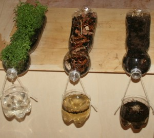 Lapappadolcen kuva tuloksista (http://www.lapappadolce.net/en/science-experiment-on-soil-erosion-2/)