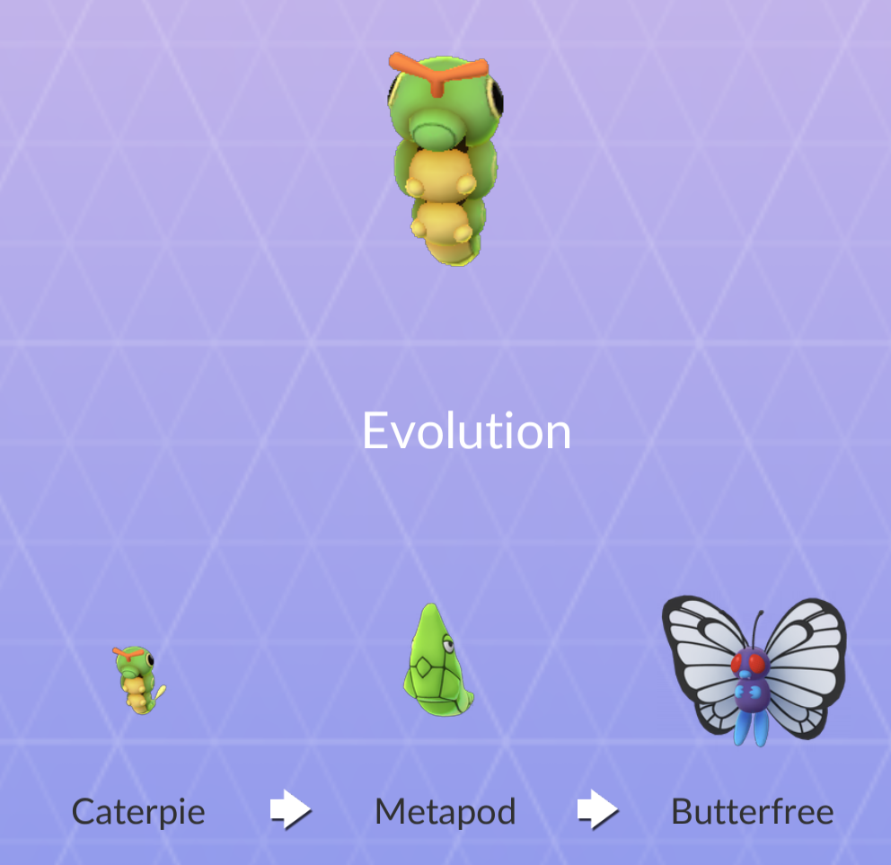 "Caterpie-pokemonin ""evoluutio"" eli metamorfoosi."