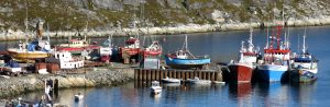 Boats_blog_picture