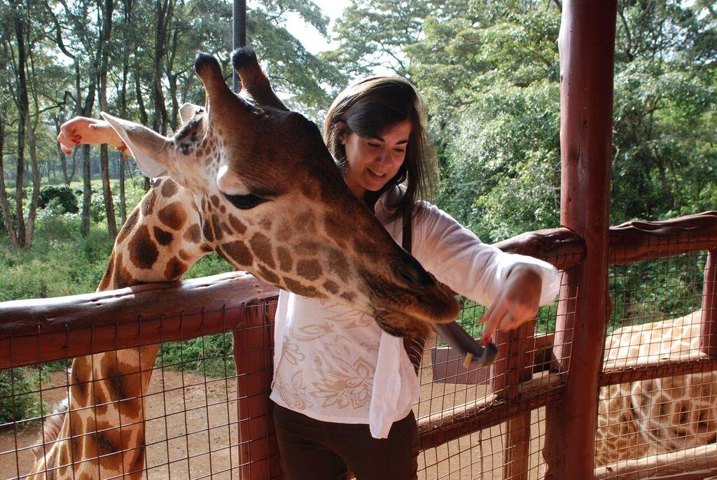 giraffe center
