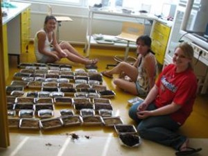 Students from the Rutgers university (USA) in a summer practice on soil science at Hyyytiälä field station in 2010 and 2011. Photo: H-S. Helmisaari.