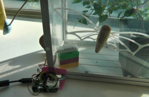 Arduino, adafruit cc3000, and dht22 sensor. Count also the beautiful butterfly.