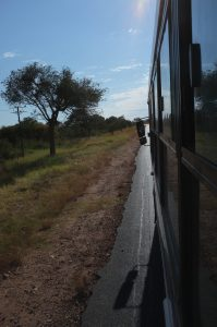 Bussimatkalla Mashashaneen.