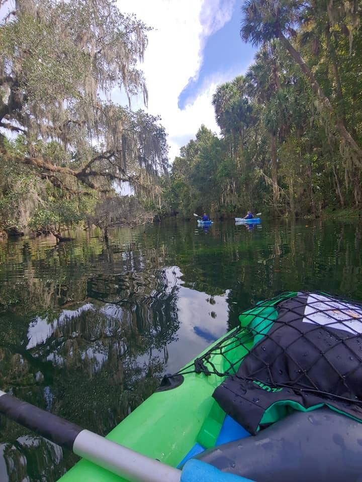 People kayaking in a natural freshwater environment