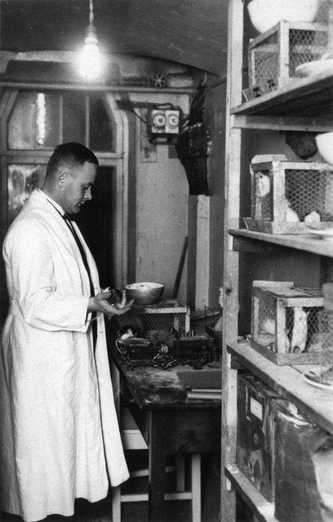 Ragnar Granit vid arbetet i sin vita läkarrock.