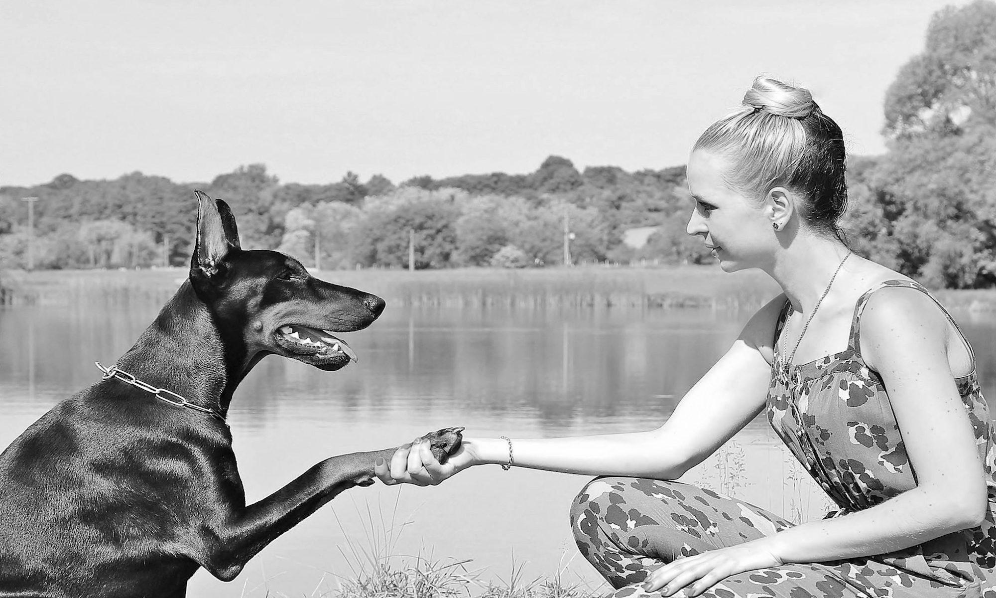 Human-Dog Interaction Study