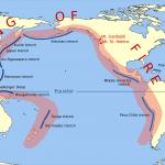 Kuva 5. Tyynenmeren tulirengas.