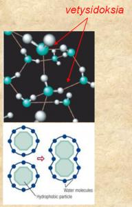 veden yksimolekyylikerros