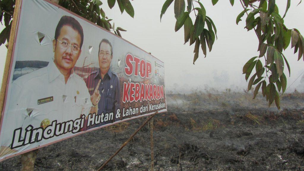 Kalimantan burning 1-2014_web_small