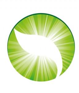 shining_leaf