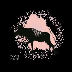 Spring Symposium Logo