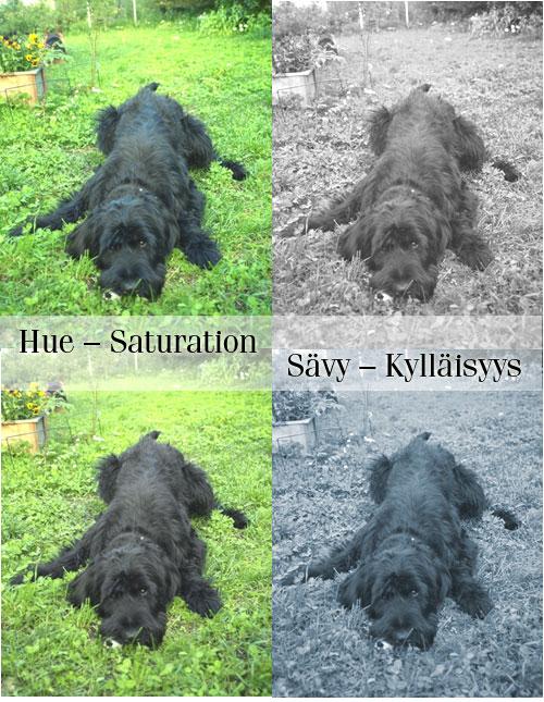 Hue-Saturation-harkka