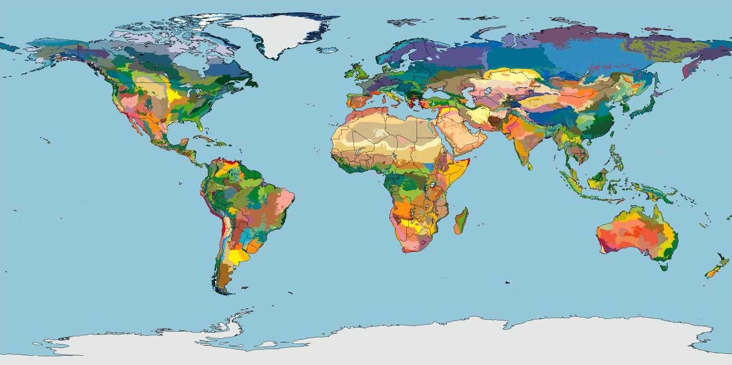 Kuva 1 Biomit/ecoregions WWF:n sivuilta