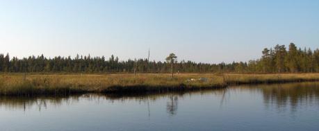 Kipojärvi