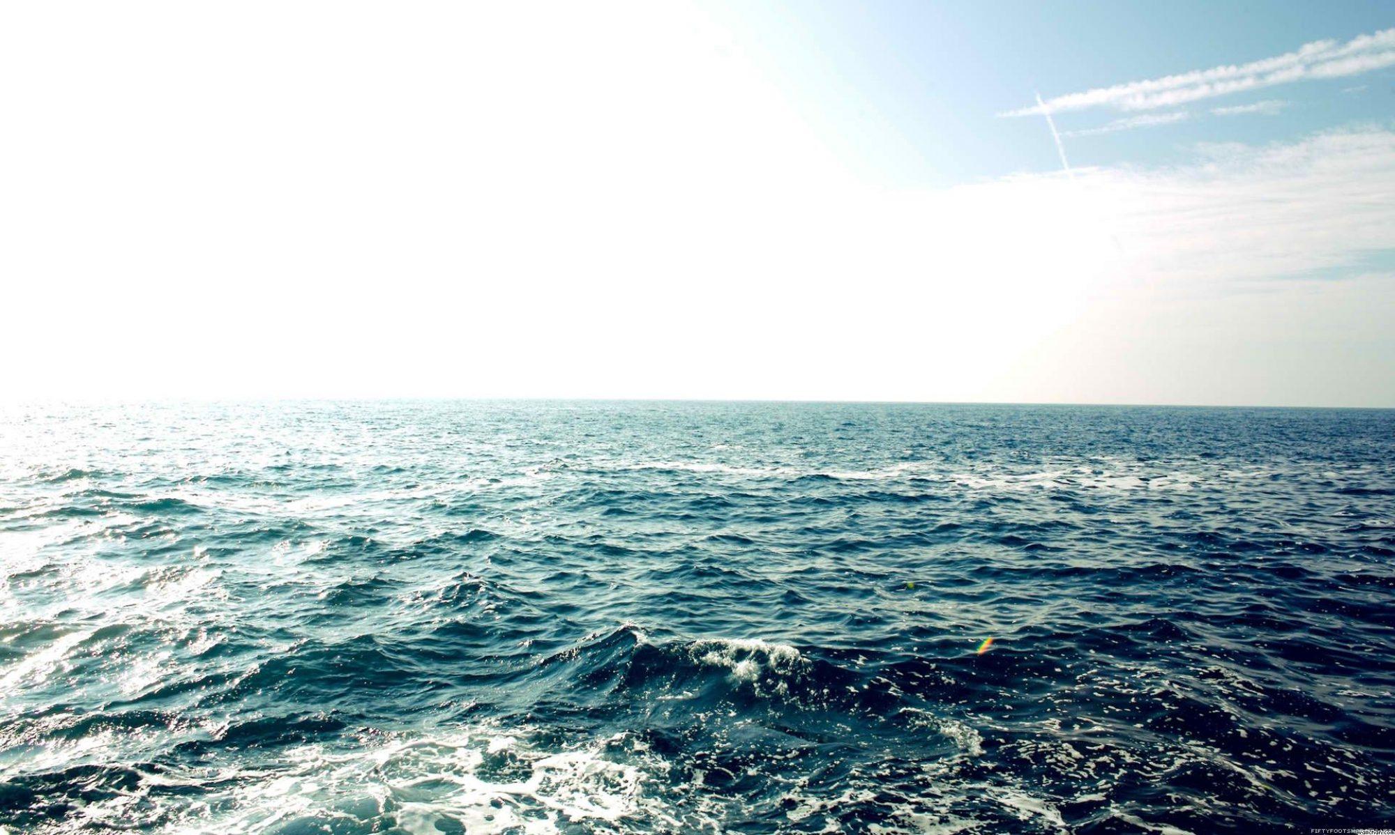 merihevin kurssiblogi