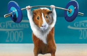 544909__weight-lifting_p