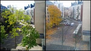 summer_autumn