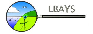 LBAYS logo by Eero Pöyhtäri.