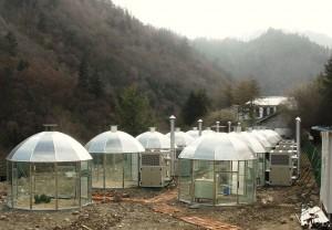 Kuva 2. Upouusia kasvatuskammioita (Wanglang, Sichuan)