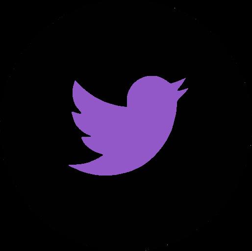 CSTT Twitter page