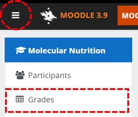 Picture: Moodle grades for course