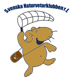 Svenska Naturvetarklubben rf