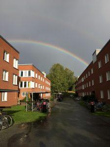 Kuva Örebron opiskelija-asunnoista