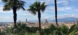 Firenzen kaupunki näkymä