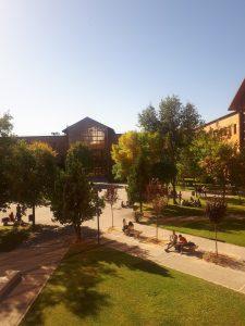Vehreä yliopisto kampus alue