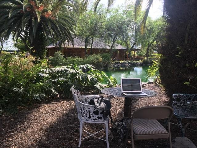 Opiskelijan työpiste kanpuksen sisäpihalla luonnon keskellä