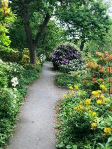 Göteborgs botaniska trädgård (Kasvitieteellinen puutarha)