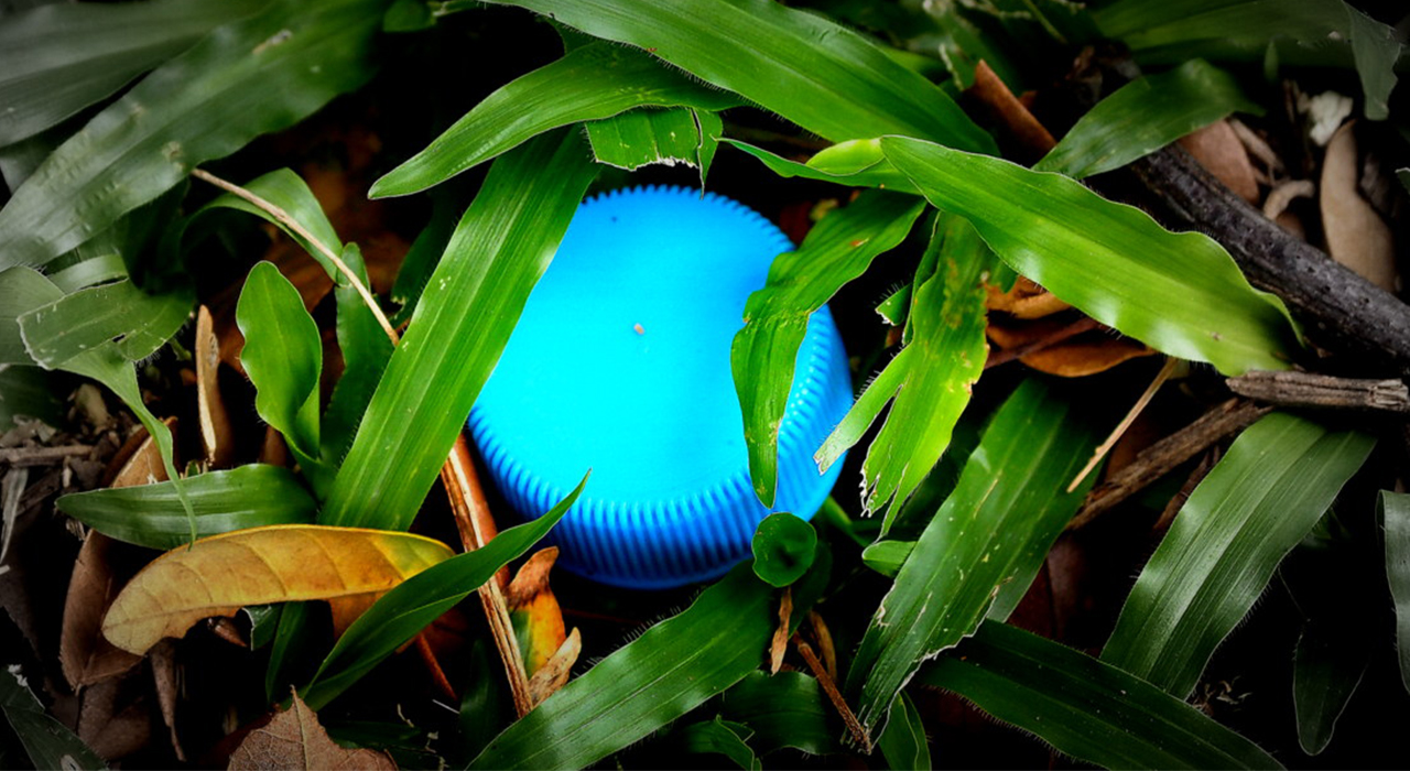 plastic bottle lid in grass