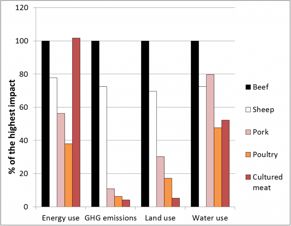 meat environmental impacts