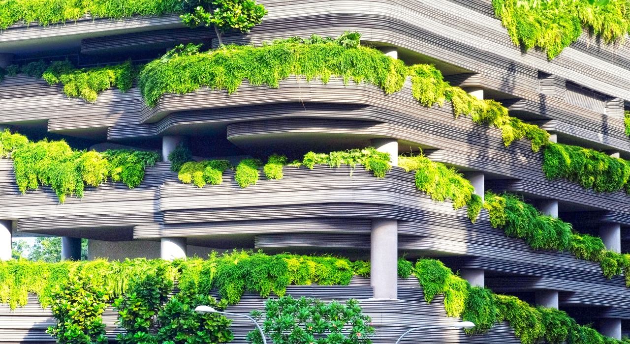concrete building covered with plants