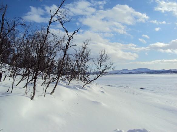 The lake Kilpisjärvi