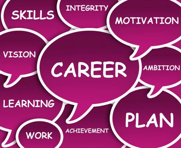 Plannin career