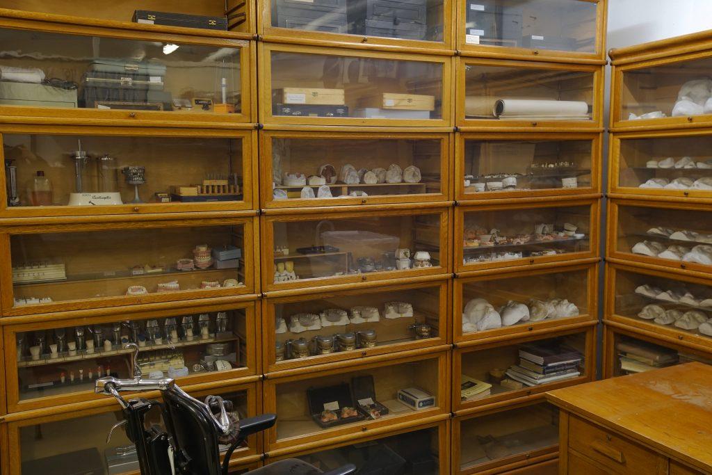 Puisissa vitriineissä on erilaisia hammasmuotteja ja kipsivaloksia.